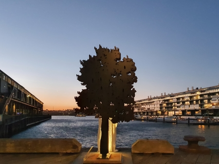 banksia_Walsh-bay-sculpture-walk