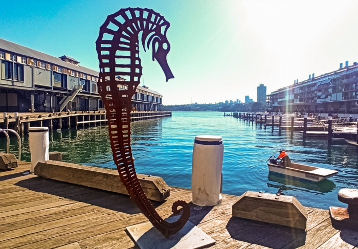 seamare-metal-seahorse-sculpture_Walsh-bay-sculpture-walk